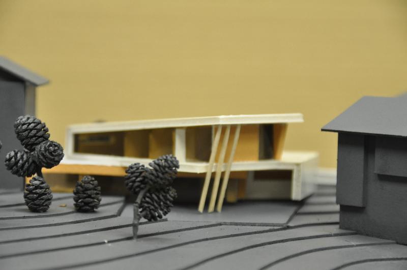 еднофамилна къща – конкурсен триптих 1